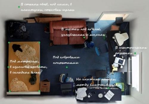 Где в комнате прячутся клопы