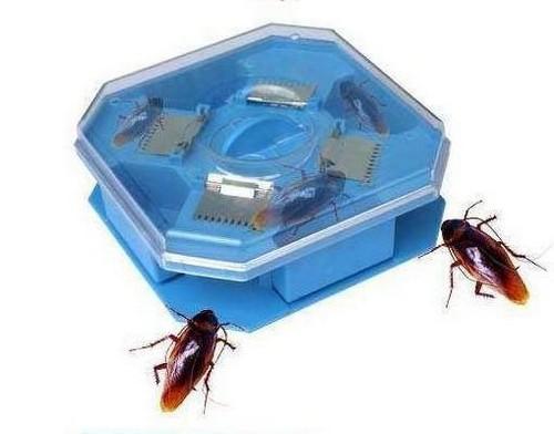 Ловушка для тараканов на стену