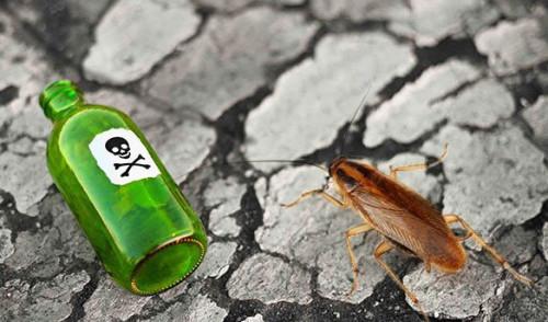 Травля тараканов