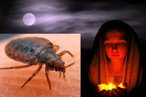 молитвы от паразитов православные