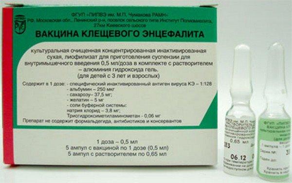 Прививка от энцефалитного клеща
