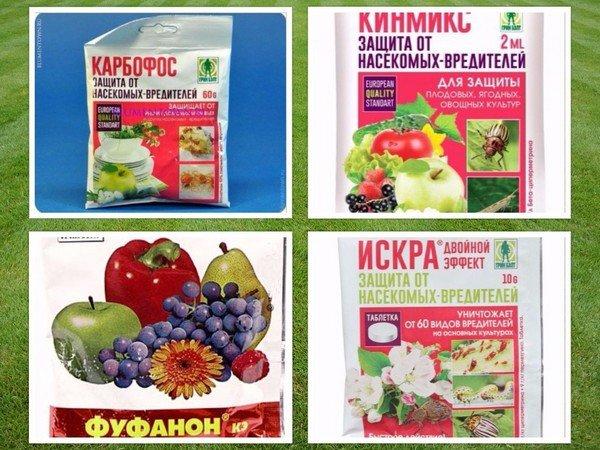 Средства для борьбы с плодовыми вредителями