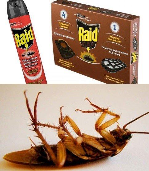 «Рейд» убивает тараканов наповал