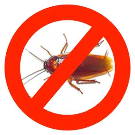 Борьба с тараканами