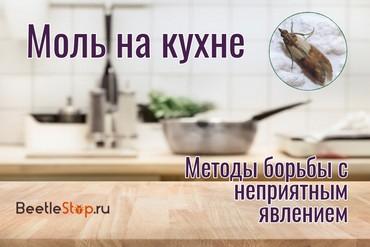 Мотыльки на кухне