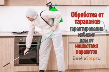 Обработка от тараканов дезинсекция