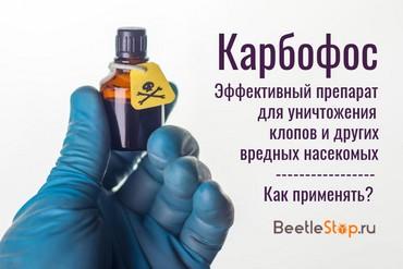 Карбофос описание. Проявления токсичного влияния на человека и домашних животных. Способы применения карбофоса