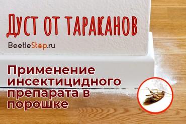 Дуст от тараканов – доступные средства для борьбы с насекомыми
